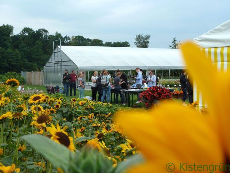 Nachbericht zum  Gartenbloggertreffen 2017 von Volmary und EMSA