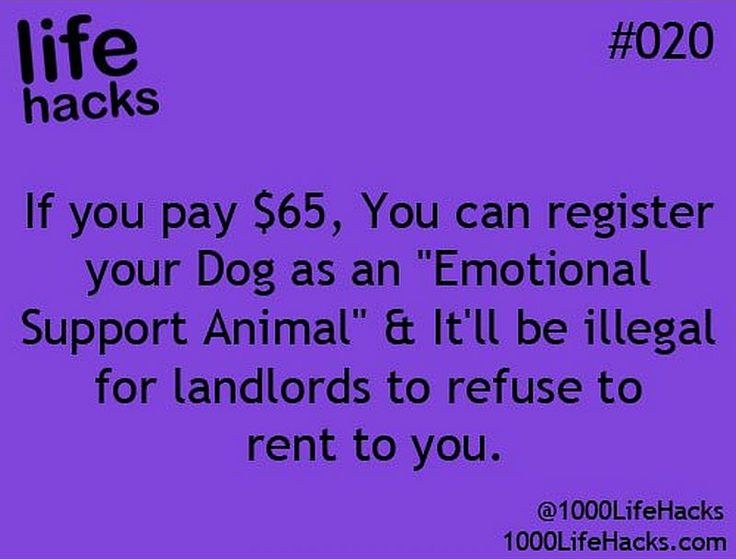 how to register an emotional support animal