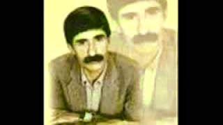 """#AbdullahPapur'un """"#SallanaSallana Dokat Ser Awe yıkamış esfabı raxe ber tave bir öpücük isterem xeyra de u bave yabancı değilem #pısmametemme"""" Türküsü"""