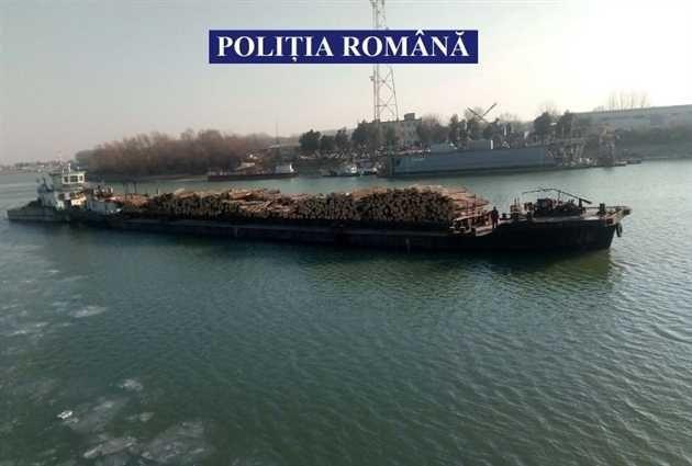 Politistii de la transporturi au confiscat peste 700 de metri cubi de material lemnos în valoare de aproape 120000 de lei si o navă șlep cu care s-a efectuat transportul acestuia