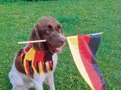 Gero aus Suhl-Neundorf kann den Sieg zur Fußball-WM noch immer nicht fassen. Der Münsterländer lässt die Deutschland-Fahne nicht mehr los.