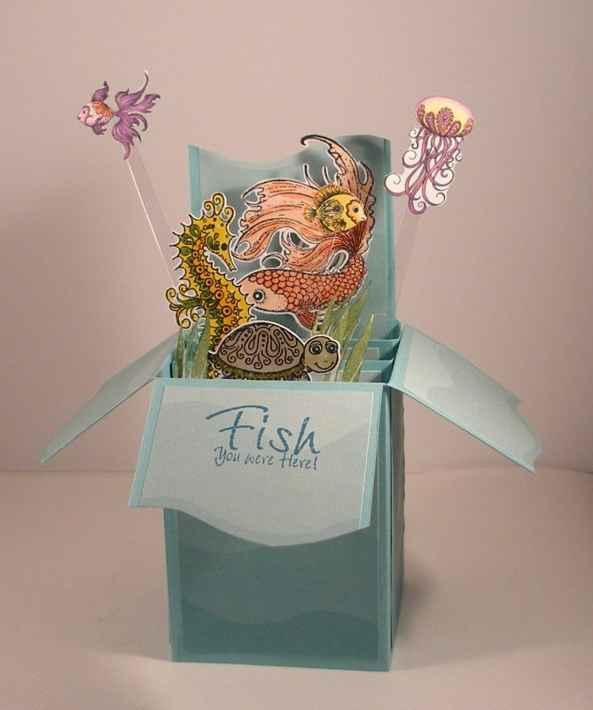 Undersea Pop-Up Box Card by Clownmom - Cards and Paper Crafts at Splitcoaststampers