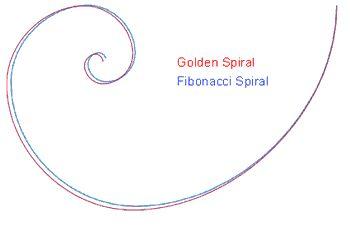 Złota spirala, spirala i szereg Fibonacciego - Sadistic.pl