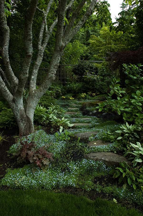 shady garden path - has a mystical vibe, my little boys would love playing in there...