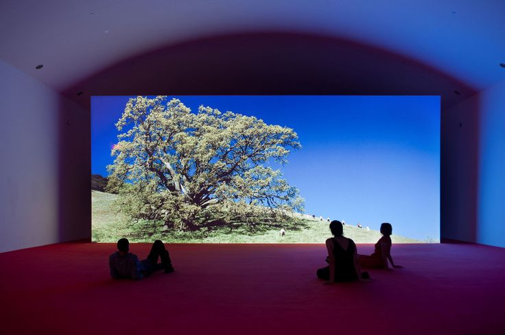 Preview Artist Philippe Parreno's Largest American Exhibition-Wmag