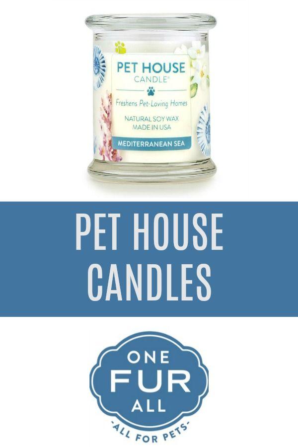 Mediterranean Sea Pet House Candle Pet Odor Candle 100 Soy Wax Pet Odor Candles Home Candles Pet Odors