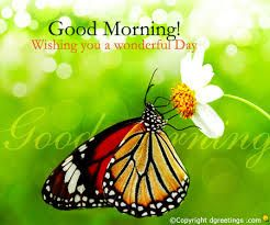 Image result for images of good morning
