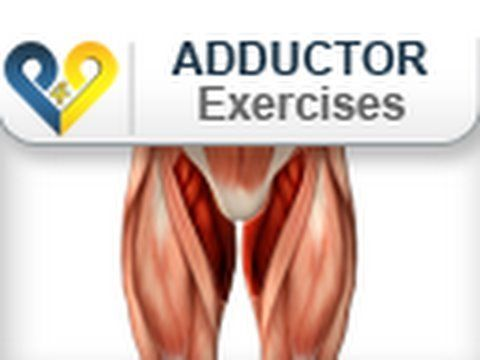 Adductor exercises : Pushes on swiss ball  for inner thighs (+playlist)