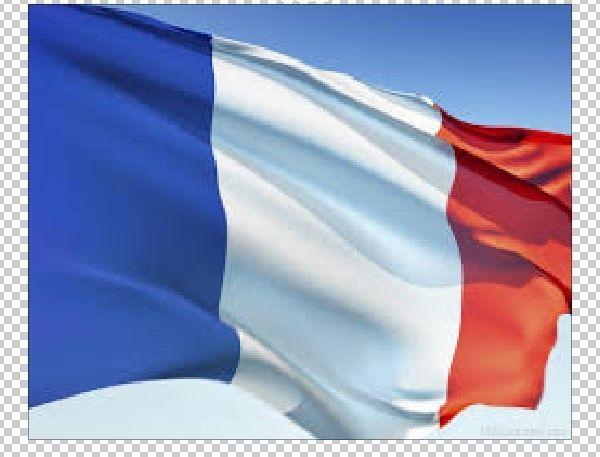 FRANCE FRENCH NATIONAL COUNTRY WAVING POLE FLAG SOCCER DRAPEAU PAYS #FRANCE #FRANCEFLAG #FLAGOFFRANCE #WAVINGFLAG