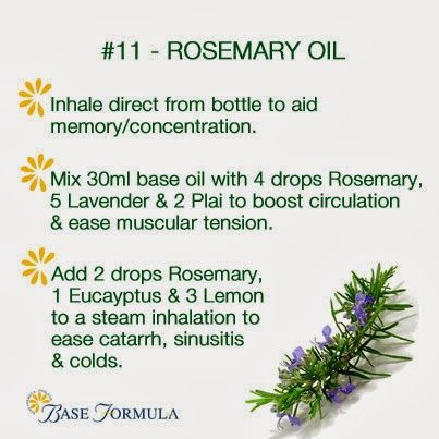 Rosemary Essential Oil -- Buy dōTERRA essential oils online at www.mydoterra.com/suzysholar, or contact me for more info.