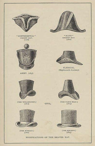 Ploaia de cuvinte: Istoria palariei