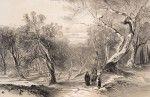 Άποψη από το λόφο των Αγίων Δέκα - Κέρκυρα, Χαρακτικό, 24 x 36 εκ., Ιδιωτική Συλλογή, Ηνωμένο Βασίλειο by edward lear