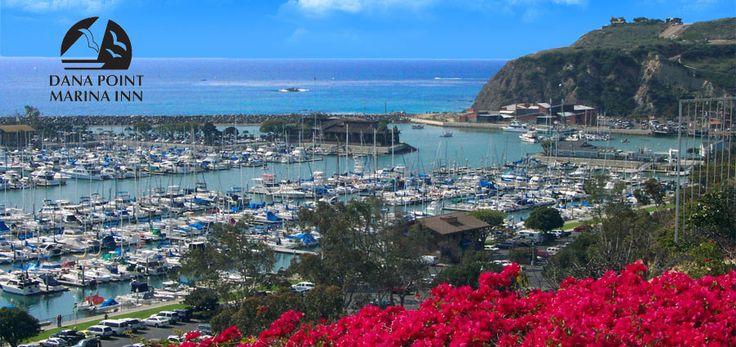 Dana Point Marina Inn | Dana Point Marina Inn