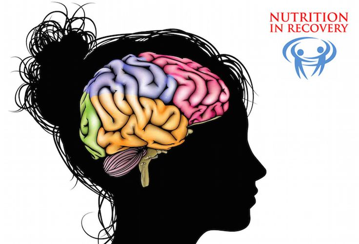 How do your food choices impact the health of your brain?