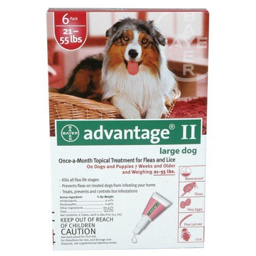 Dog Fleas Dog Flea Killer Dog Flea Shampoo Dog Flea Spray. Dog Flea Bath. Reviews and ratings by fellow dog lovers. Pleas visit  http://pet.pinptr.com/category/dog-supplies/dog-health-supplies/dog-flea-lice-tick-control/   ♥ Please Repin.♥ Bayer Advantage II Red 6-Month Flea Control for Dogs 21-55 lbs. | Pet Supplies ♥ ♥ Reviews & RatingsPet Supplies ♥ ♥