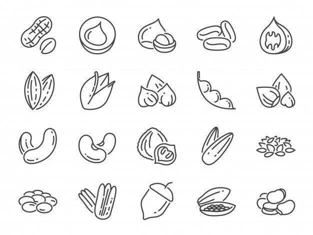 Nuts Seeds And Beans Icon Set Premium Premium Vector Freepik Vector Food Coffee Star Line Icon Set Peanut Brands Icon