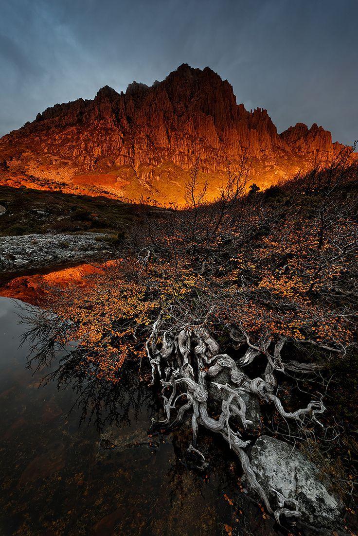 Cradle Alpen Glow--Cradle Mountain, Tasmania by Robert Mullner