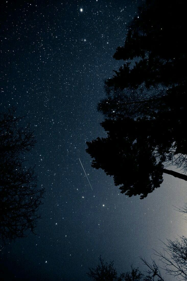 Star Love With Images Night Skies Sky Starry Night