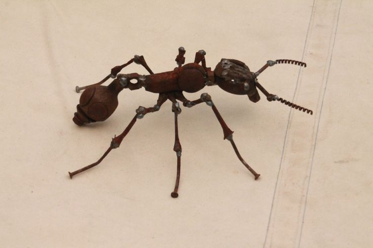 Scrap Metal Ant - Insect Sculpture - Common Red Ant - Reclaimed Materials - Recycled - Repurposed by GreenHandSculpture on Etsy https://www.etsy.com/listing/232632082/scrap-metal-ant-insect-sculpture-common