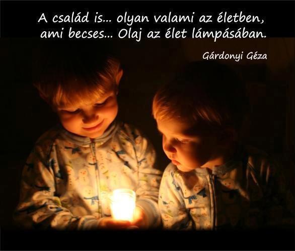 Gárdonyi Géza gondolata a családról, Ida regénye c. regényéből. - A kép forrása: Az élet igazságai # Facebook