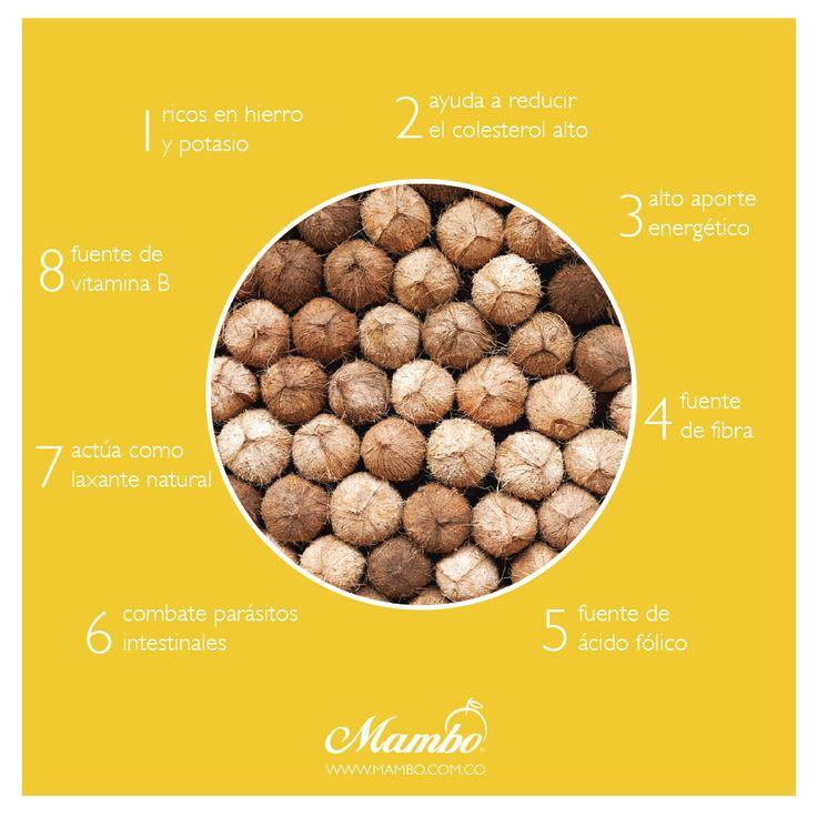 Beneficios del coco. Frutas y verduras Mambo. www.mambo.com.co