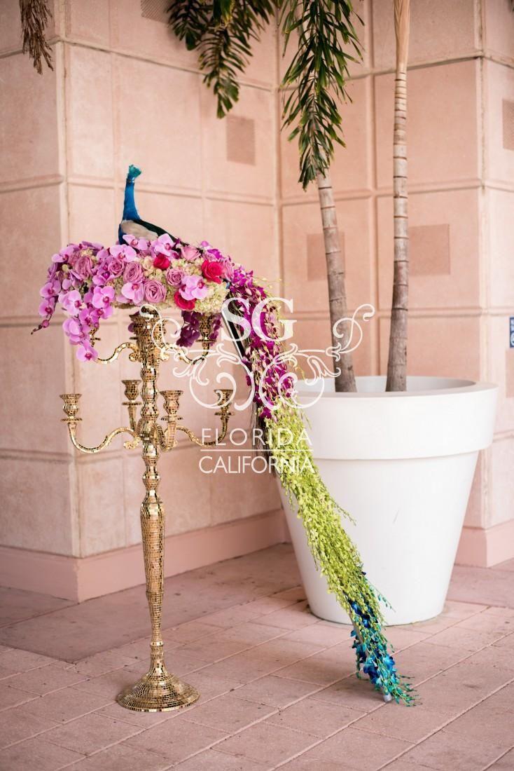 Suhaag Garden Indian Wedding Decorators...Florida-California? I live in Cali, Wedding in FL haha...n love peacock feathers #wedding #mybigday