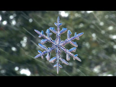 Snowflakes photographed by new high-speed camera - YouTube