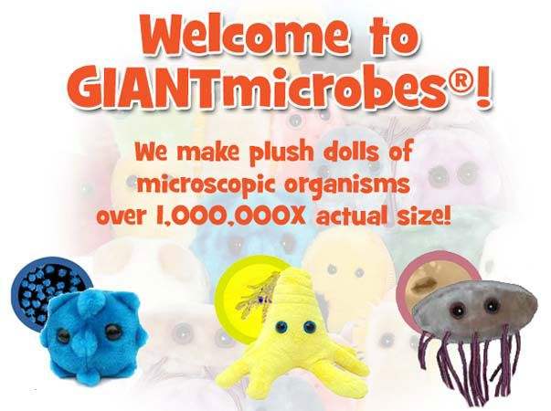 Welcome to GIANTmicrobes! We make plush dolls of microscopic organisms over 1,000,000x actual size!