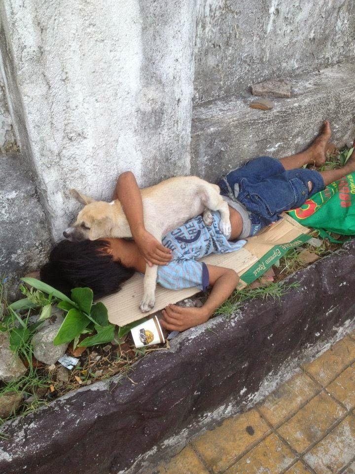 Poor child and his loyal dog hug each other while sleeping in a busy sidewalk | XOLXOL