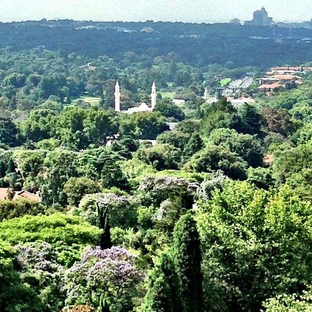 white mosque in jozi jungle