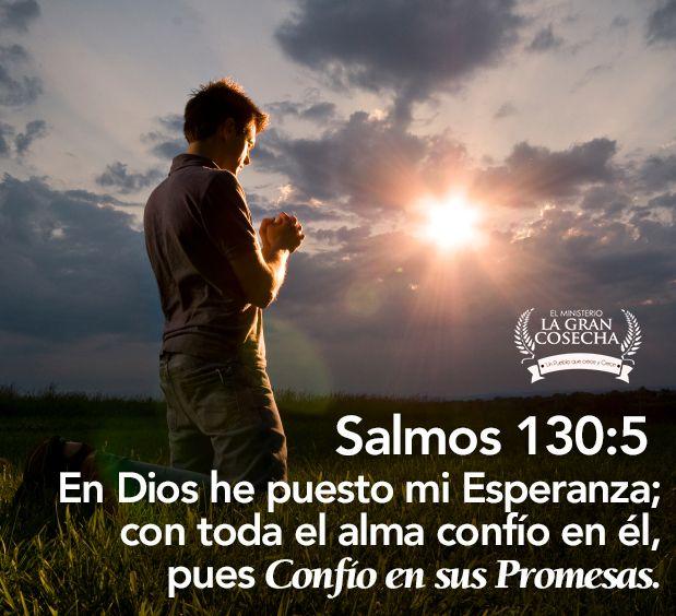 En Dios he puesto mi esperanza; con toda el alma confío en él, pues confío en sus promesas. Salmos 130:5