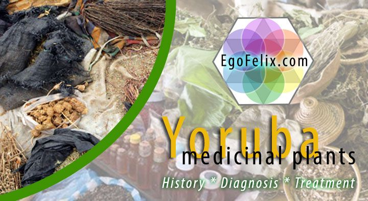 The best Online Dictionary with Names for Medicinal Plants from Nigeria. Here you find names of herbs and plants in Yoruba language, English