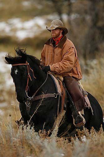 The working cowboy/ man