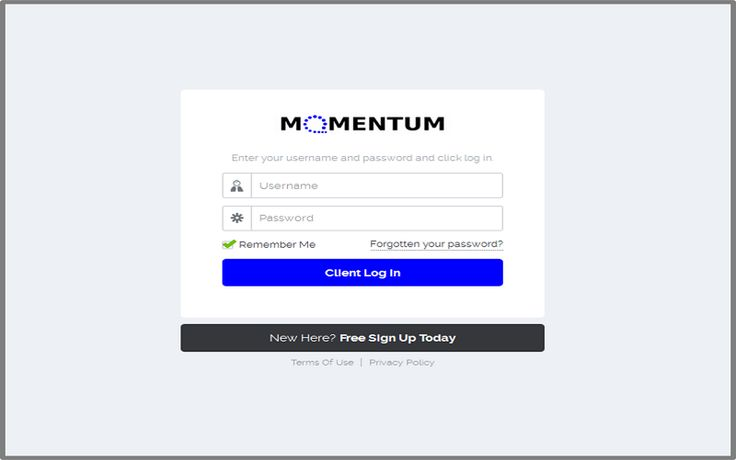 Log in to your MOMENTUM Social Dashboard
