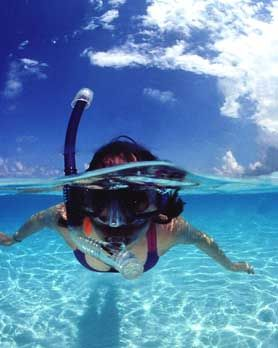 Snorkeling the Waters of the Cayman Islands www.visit-the-cayman-islands.com/
