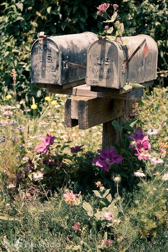 "Vintage country mailboxes.  I got a kick out of this ""vintage country mailboxes"".  We still use one like this : )"