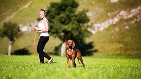 Hund hört nicht: Frau entfernt sich.