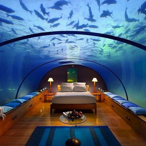 Living in another level, try this underwater bedroom in  #living #the #dream #life #bedroom #underwater #hotel #design #luxuryliving #luxury #instatravel