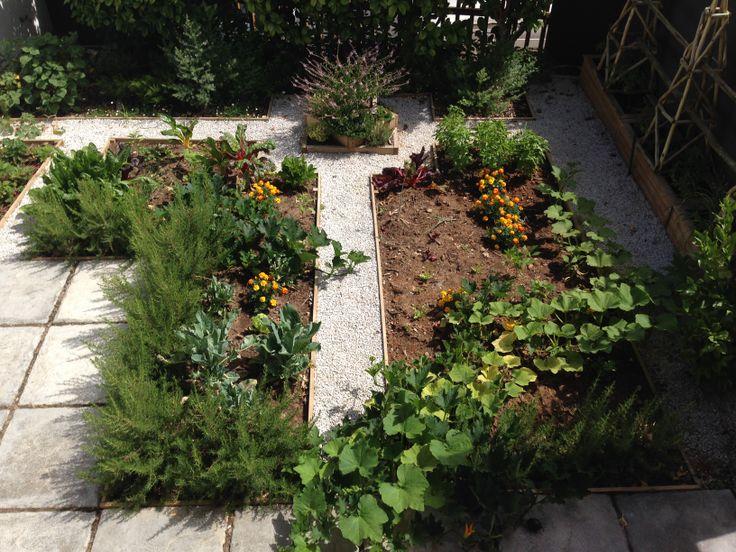 Vegetable Garden installed in Gardens by ESTABLISHMENT www.establishment.co.za
