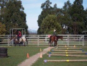 American Riding Instructors Association