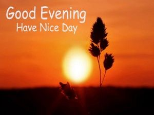 These good evening sms are collected by different users. Read these text and feel free to share and send mobile sms your friend & family members or loving person. Read and enjoy.
