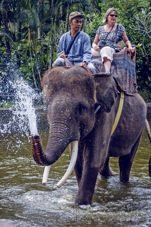 Balinese elephant who knows that it is #Friday .He looks so happy.  Enjoy weekend!!!! #IHF #PictureOfTheDay