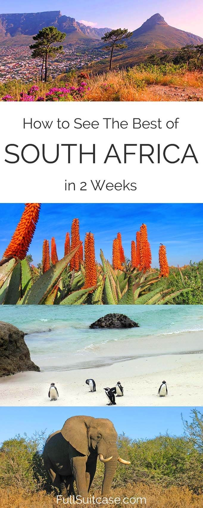 See the best of South Africa with this complete 2 week itinerary from Johannesburg to Cape Town #SouthAfrica