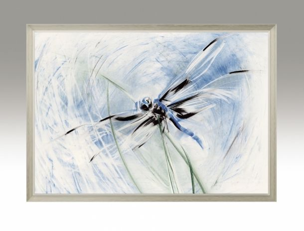 Dragonfly. Water Series.