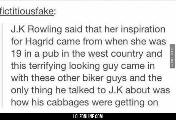 Rowling Getting Her Inspiration#funny #lol #lolzonline