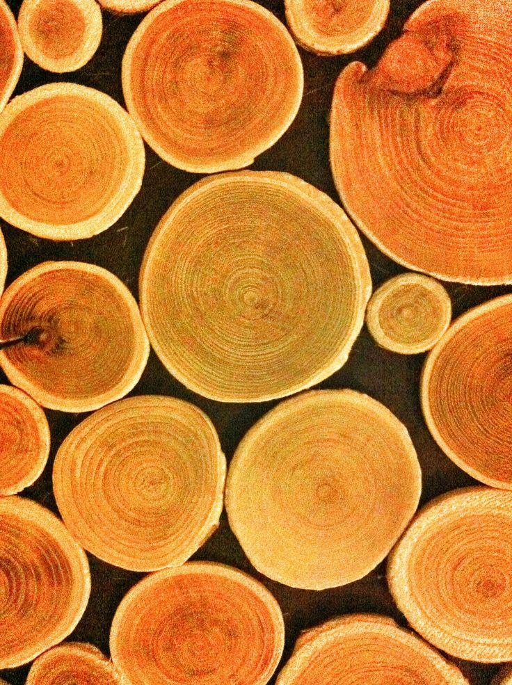 #autumn #wood