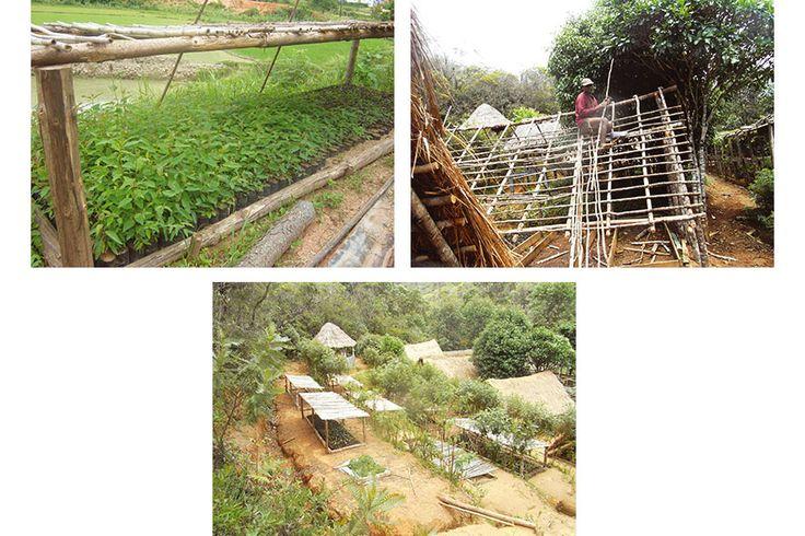 Favini's commitment to Voiala #Madagascar Project continues: 23394 new plants! Findout more http://www.favini.com/en/press-release/favini-renews-its-commitment-to-the-voiala-project-in-madagascar-for-2016/ - Share it on twitter https://twitter.com/favini_en/status/699276836187082752