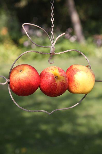 Till fåglar och insekter : Fågelmatare Äpple