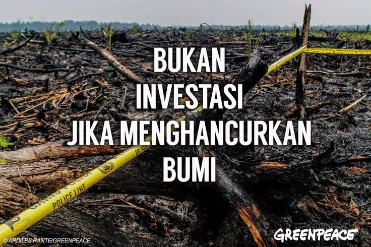 Setuju? Mari kita cegah kabut asap dengan membuat tata kelola kehutanan Indonesia lebih transparan dan bisa diawasi masyarakat.