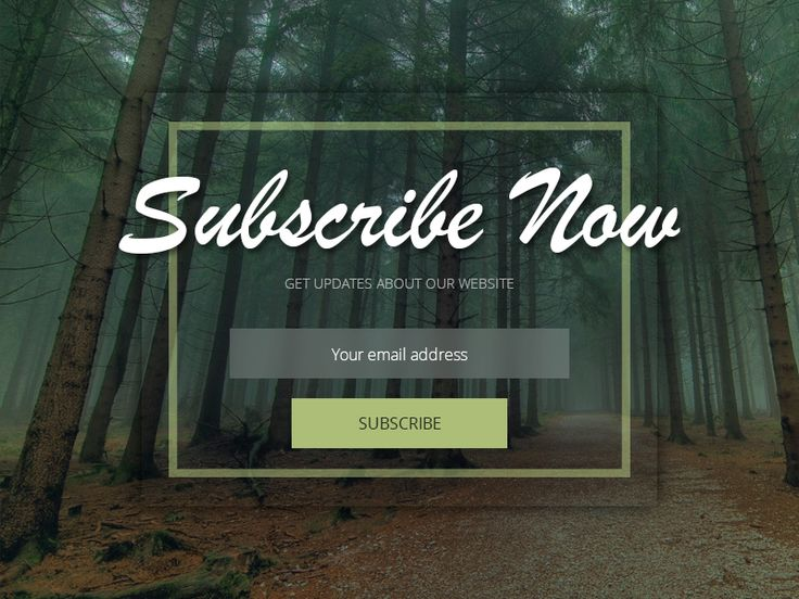 Newsletter Subscription by Andrei Velicu